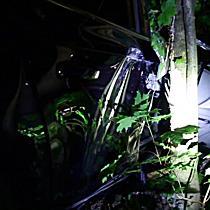 Schwerer Crash mit Fahrerflucht in der Gneiserstraße