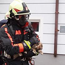 Pichlergasse: Zimmerbrand fordert zwei Leichtverletzte