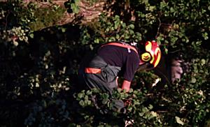 Sturmboen über Salzburg – Großeinsatz der Feuerwehren
