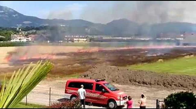 Weizenfeld brennt in Maxglan nieder