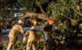 Feuerwehren im Großeinsatz