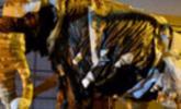 Mammut über Salzburg I
