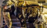 Mammut über Salzburg II